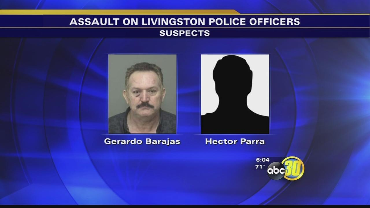 Livingston police officers recovering after being assaulted by 20 people