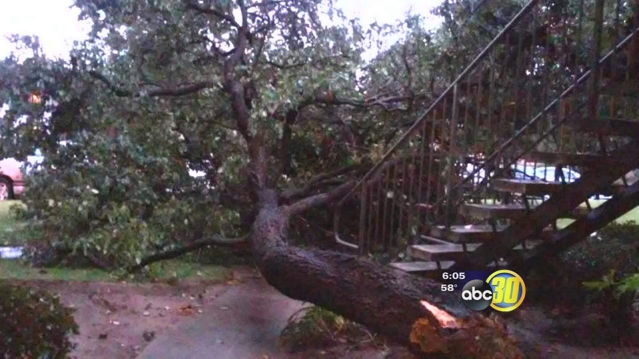 Fresno city workers back to normal duties after large storm response