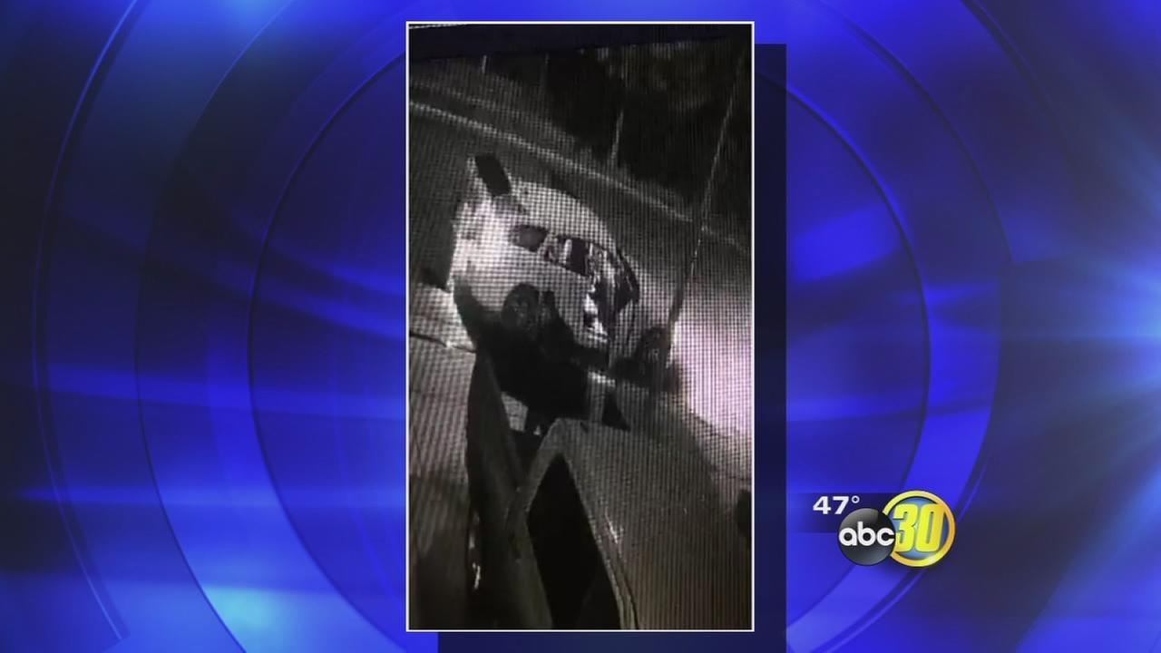 Thieves caught on camera stealing tailgate in Sanger