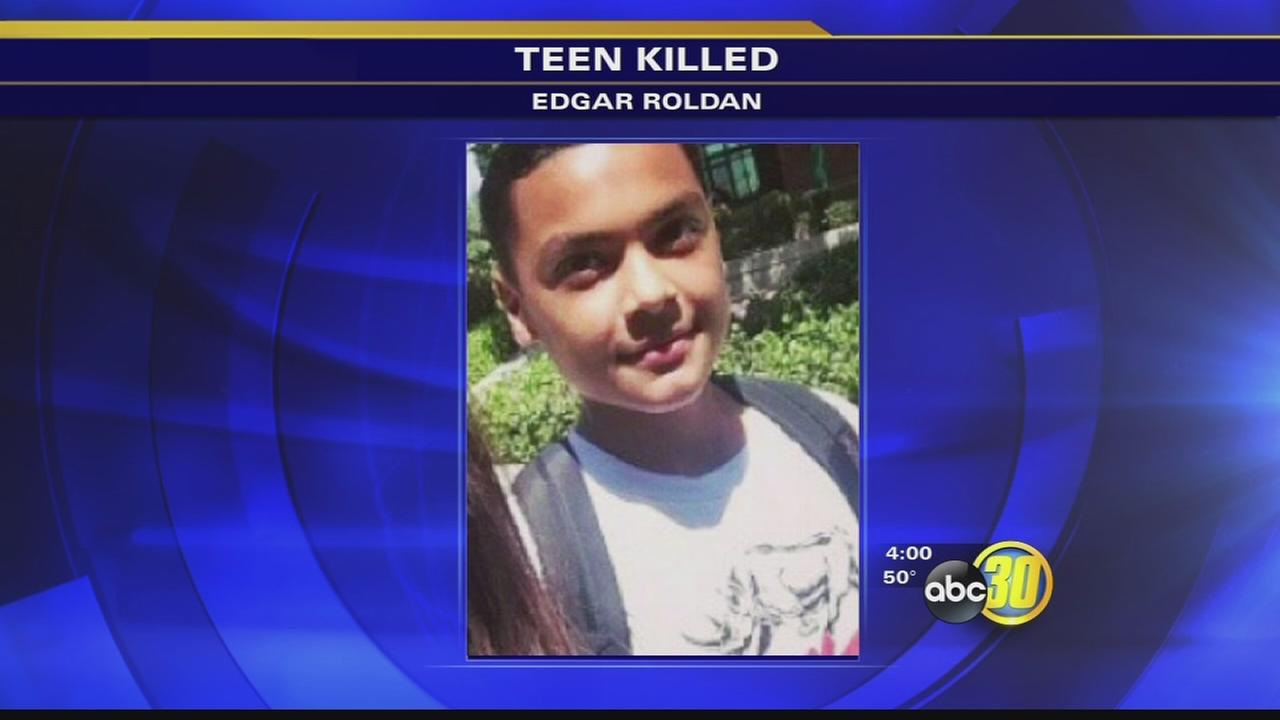 Teen killed by train identified
