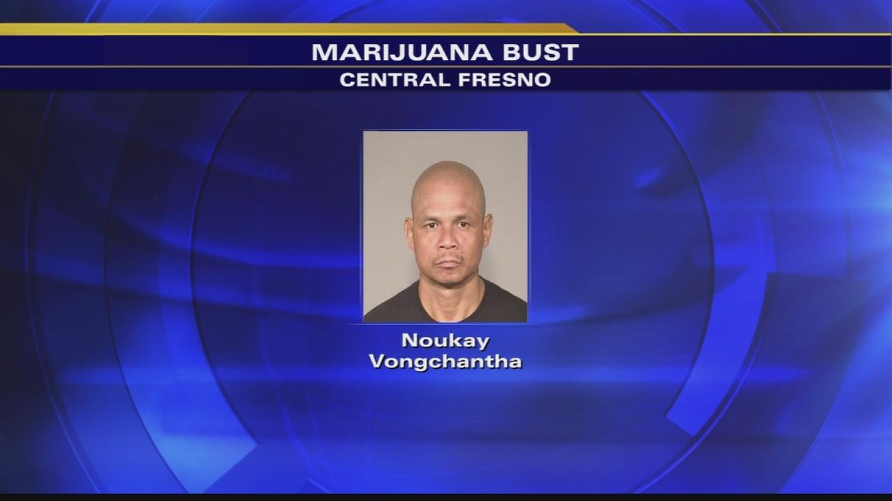 Police arrest man with 10 pounds of pot after traffic stop
