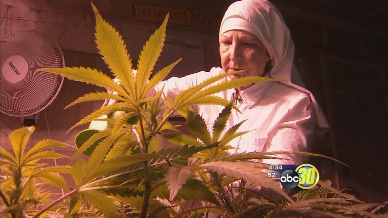 Merced nuns fight to keep their marijuana based business