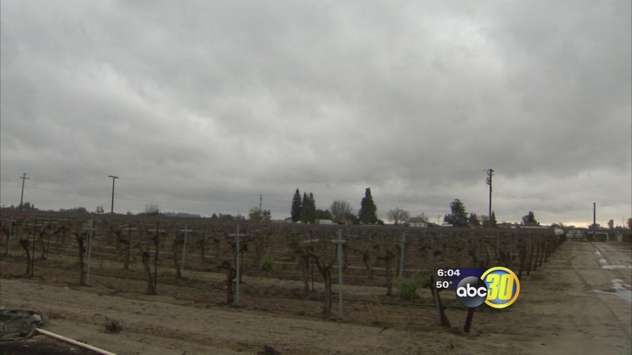 Farmers welcome series of storms