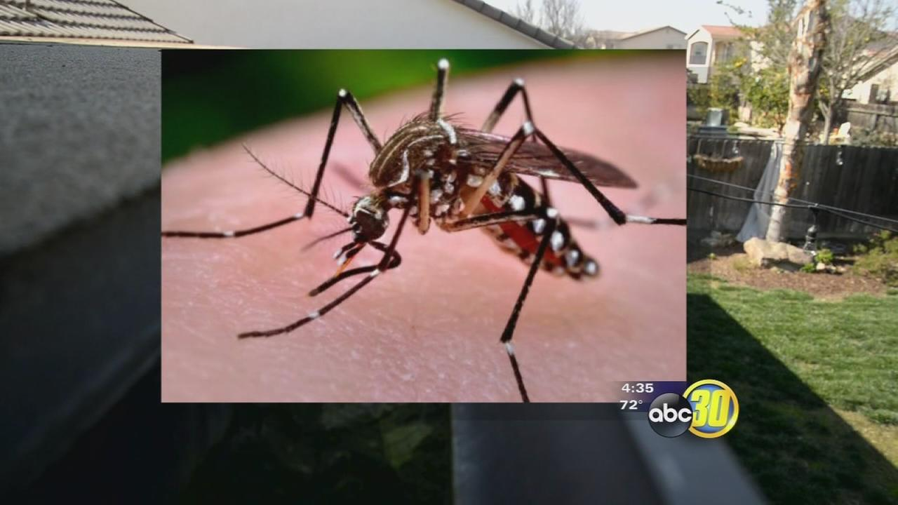 Mosquito Abatement officials concerned about warming weather