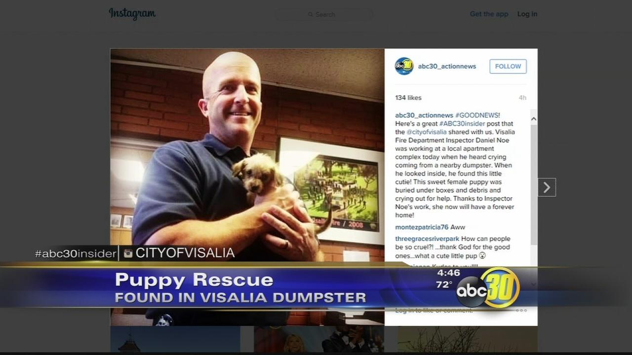 South Valley man being called a hero after saving puppy