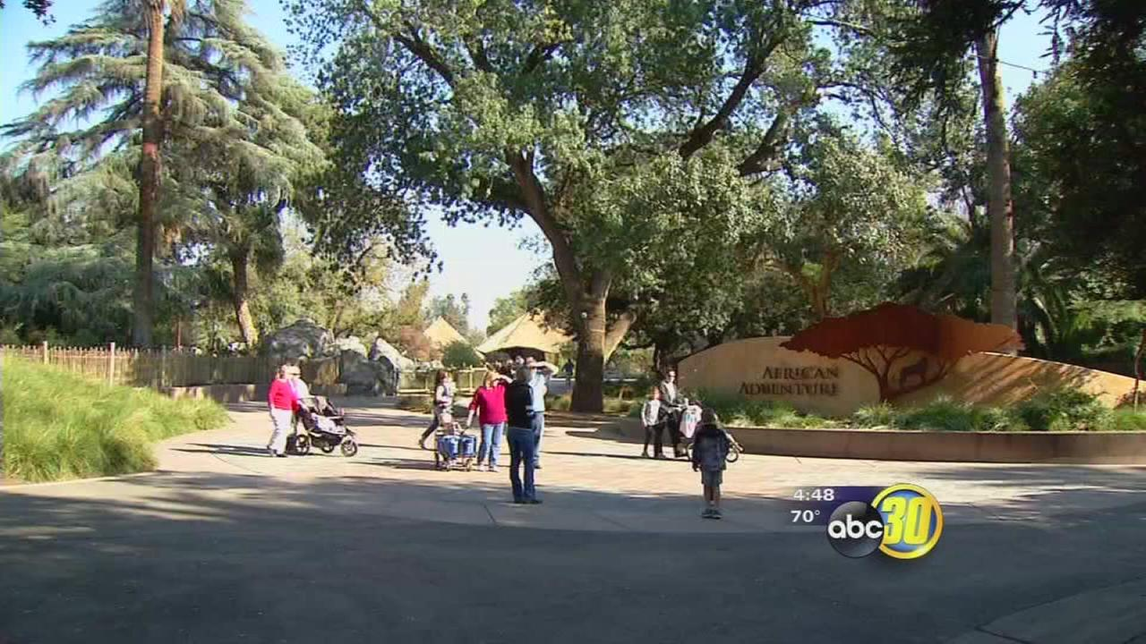 Chaffee Zoo looking to fill new positions