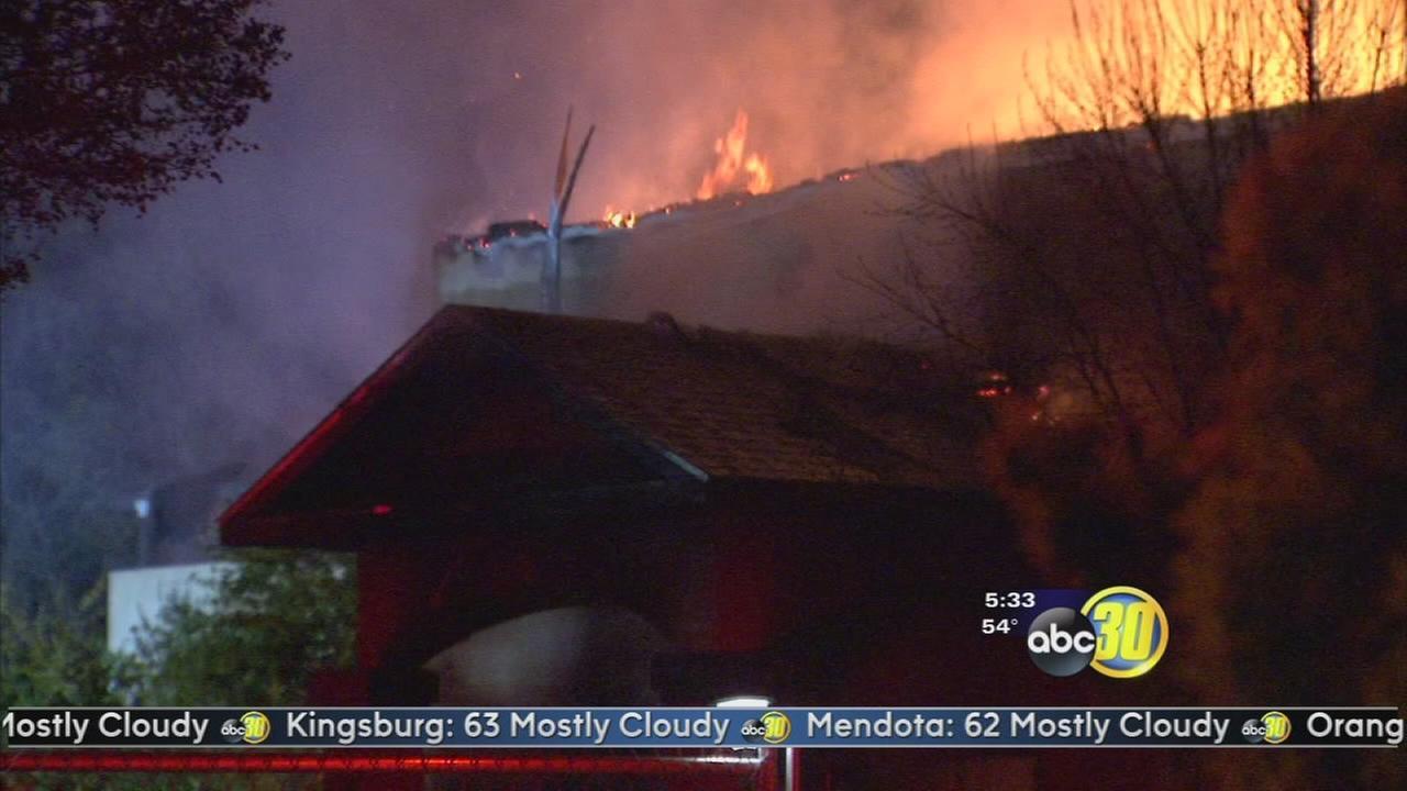 Marijuana plants found in back yard of burned Sanger home