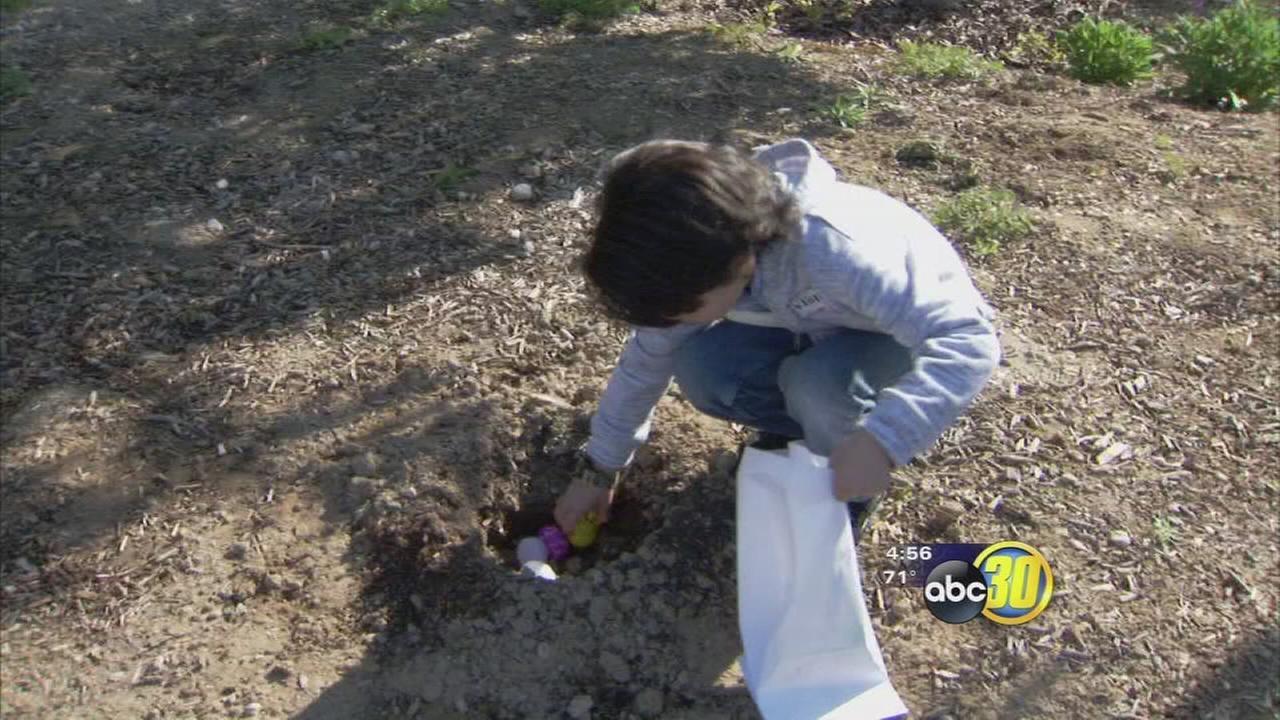 Fresno Veterans Home hosted Easter egg hunt for local children