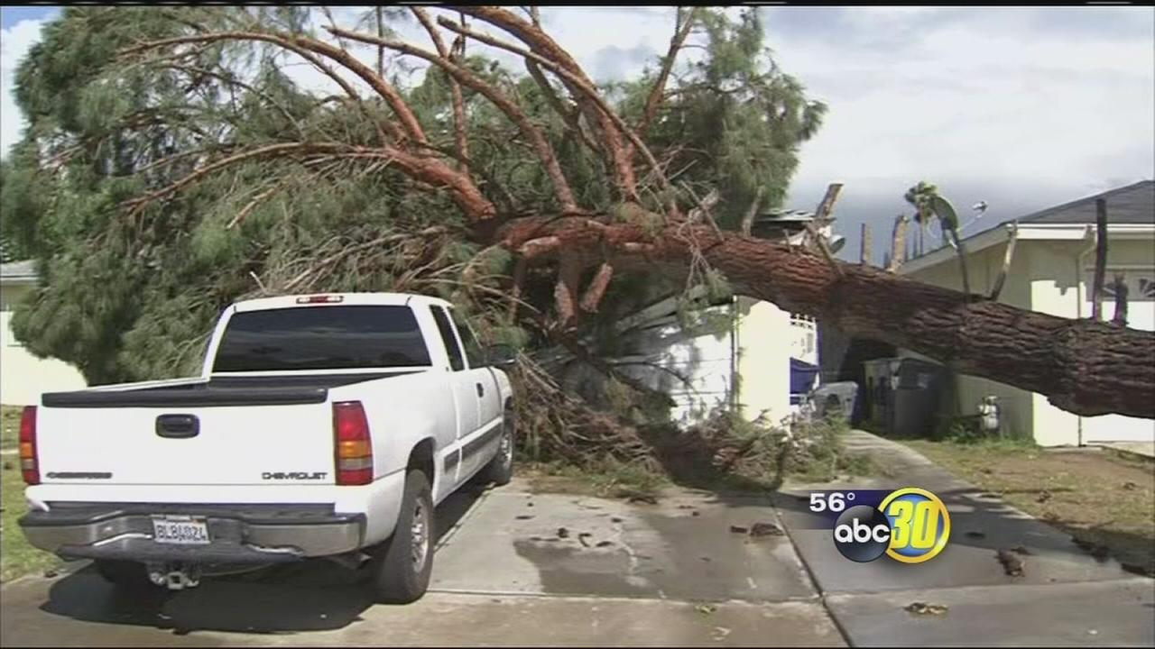 Wild winds wreak havoc across Madera