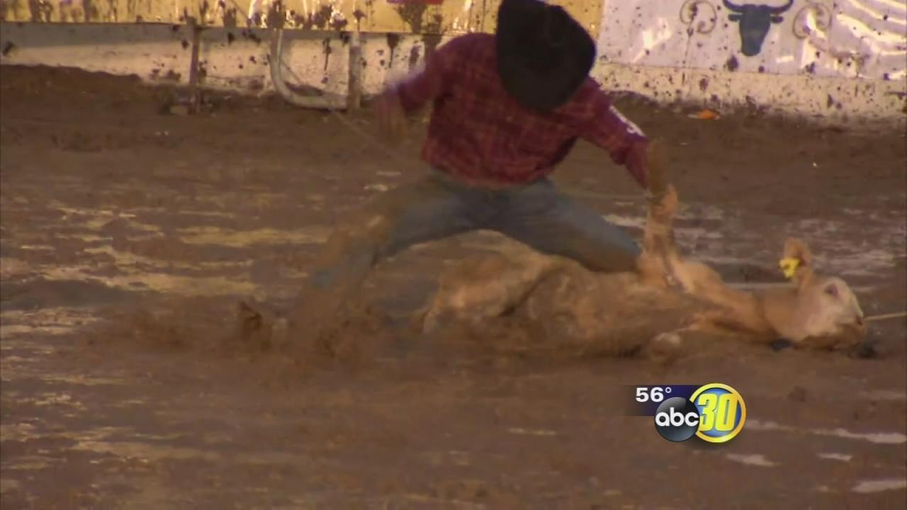 Heavy rain and strong winds cant stop Clovis Rodeo