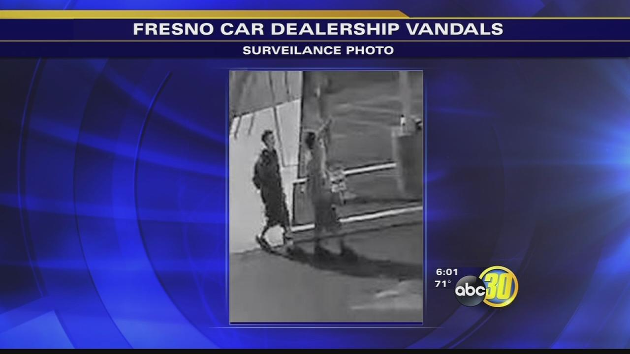 Police and dealership owner asking for help finding vandals