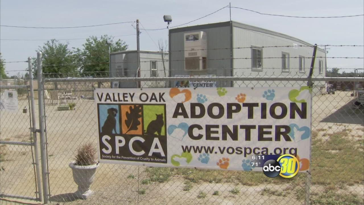 Valley Oak SPCA and city of Visalia end contract
