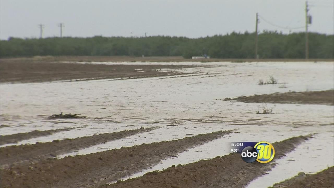 Heavy rain causes flooding and problems for Valley farmer