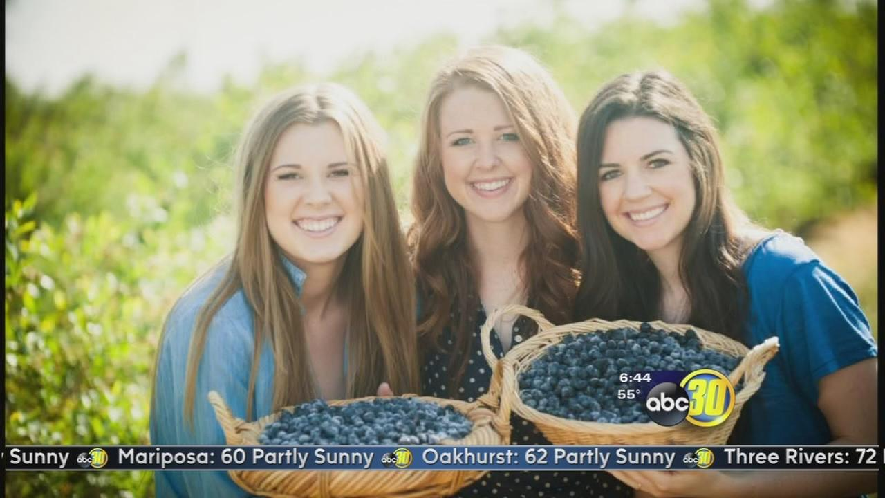 Made in the Valley: Triple Delight Blueberries