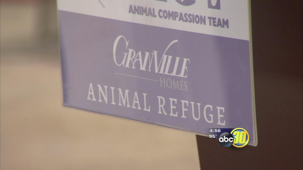 Local animal rescue will soon have a bigger facility to save more pet lives