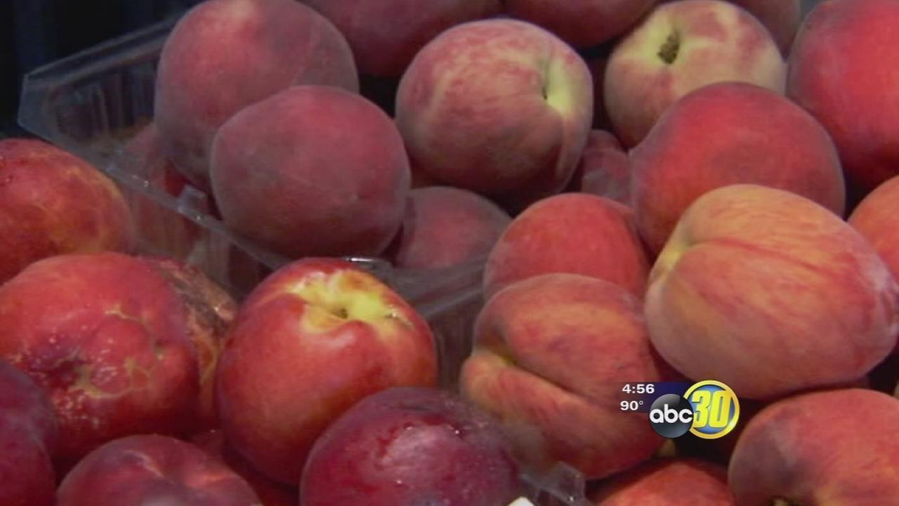 Fresno County becoming big destination for Ag tourism