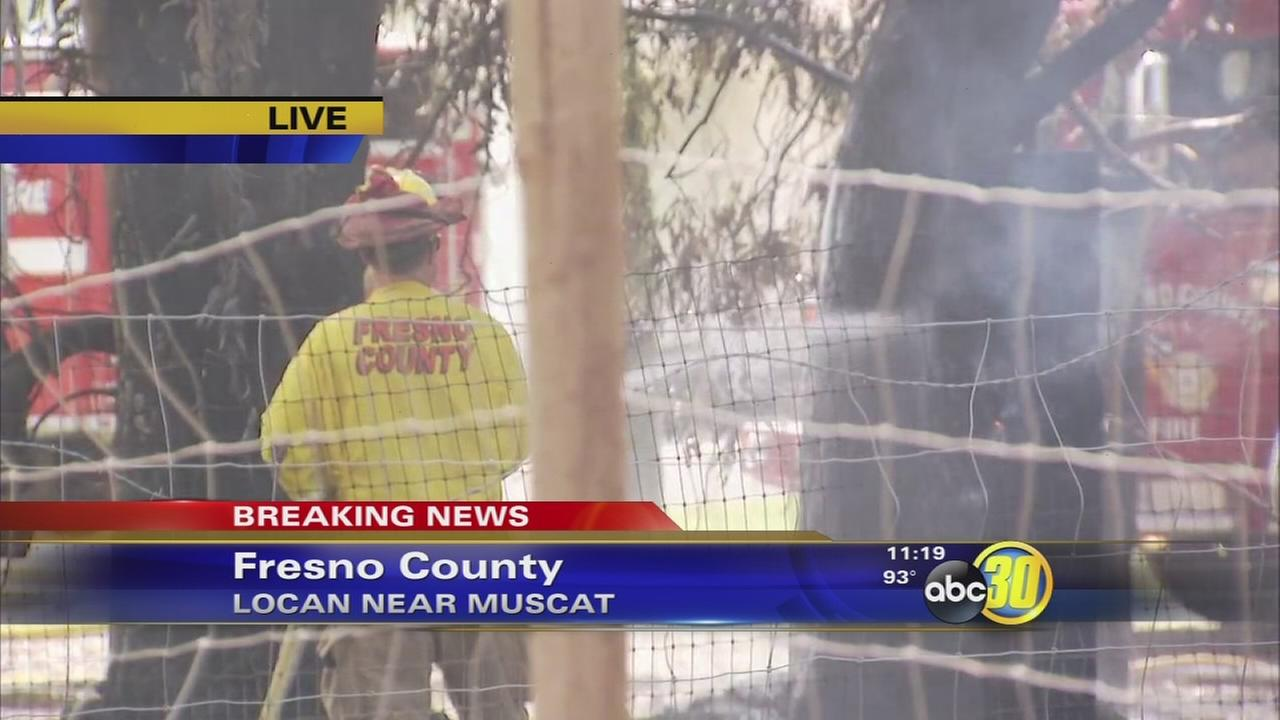 Grass fire spread to small shed in Fresno County