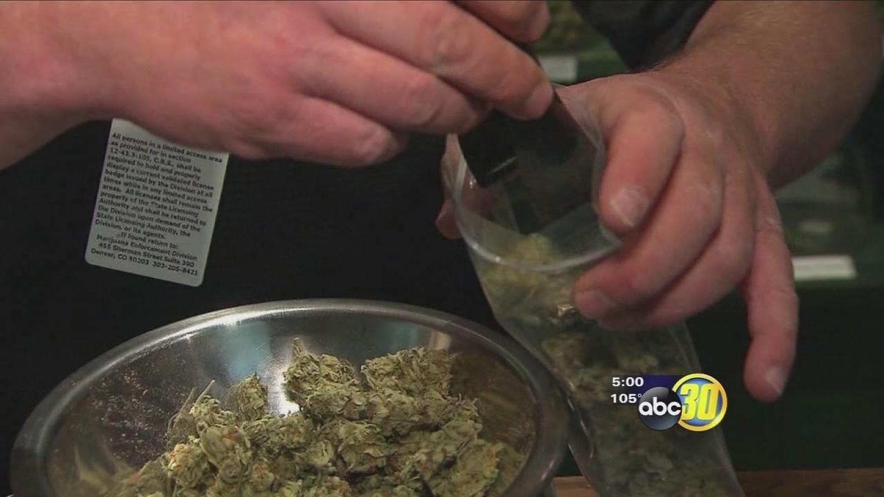 Fresno County authorities sound off on proposed marijuana legalization in California