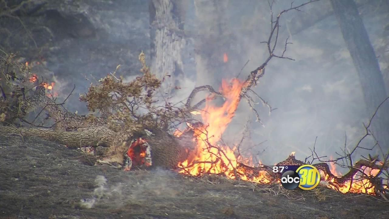 Wildfire in Fresno County forces evacuations