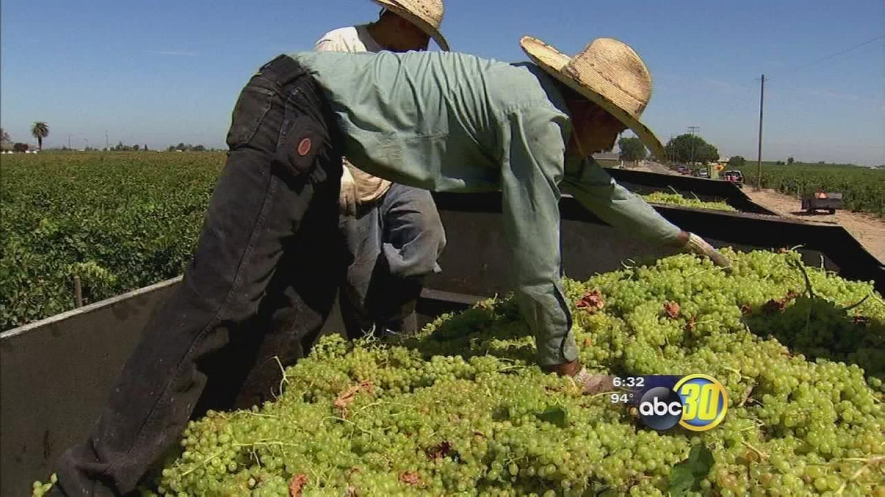 Ag report showing Fresno County farmers continue to feel effects of drought
