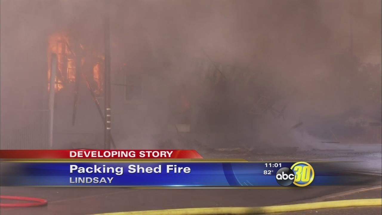 Fire crews are battling a large fire at a packing shed in Lindsay