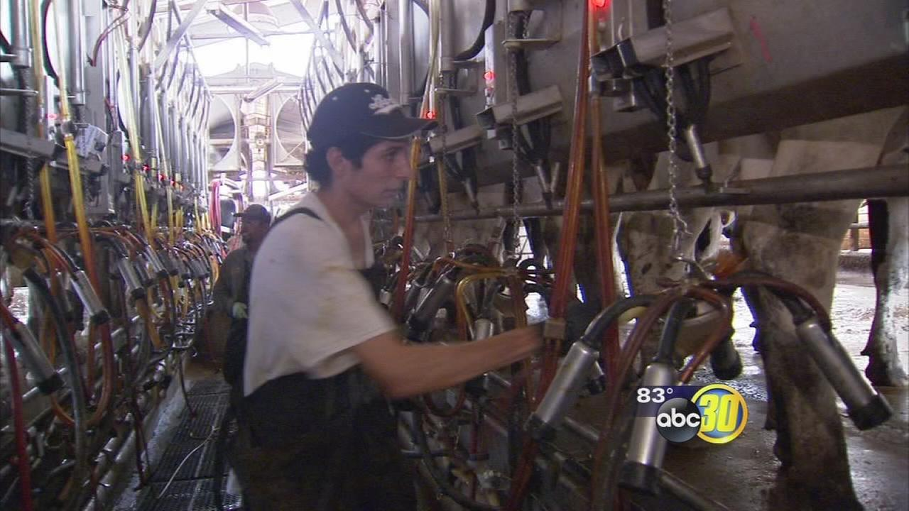 Proposal to expand overtime pay for farmworkers in California stirring up controversy