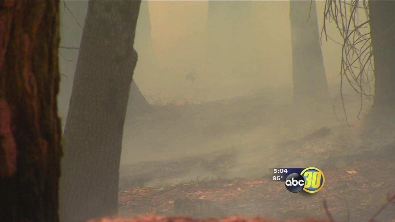 Weary firefighters battle on against Cedar Fire