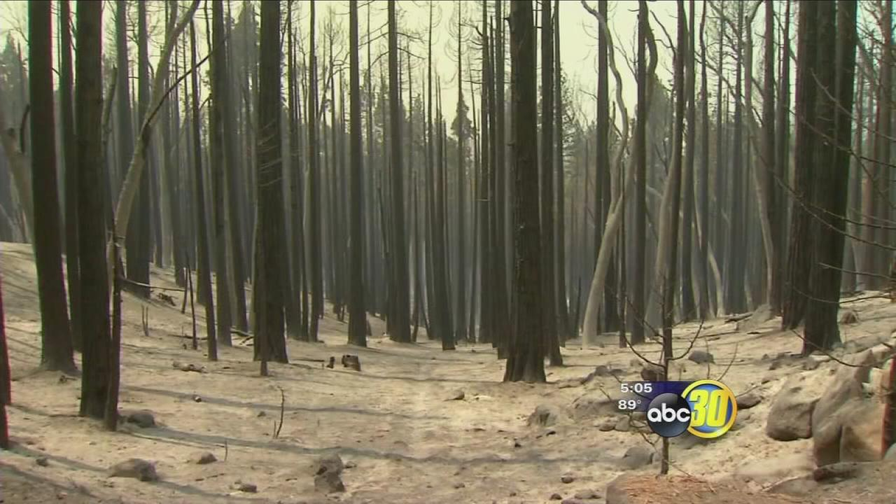 As some impacted by Cedar Fire return home others are trying to stay positive as they wait