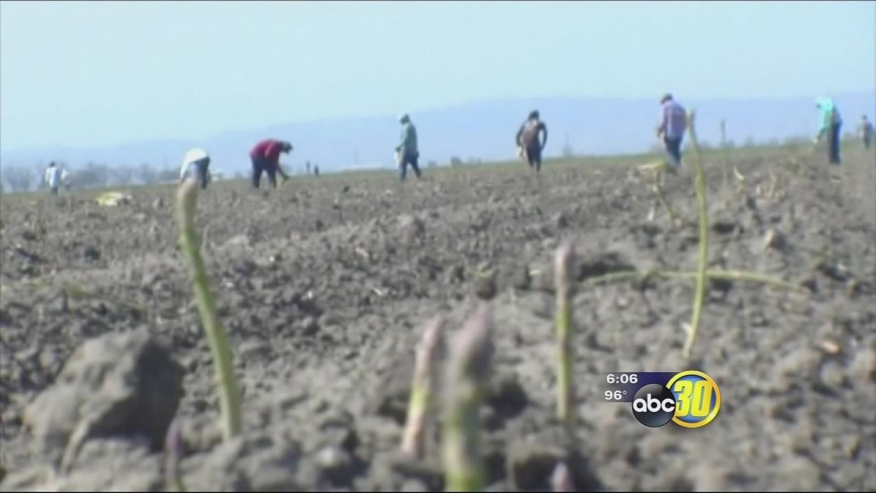 Overtime for farmworkers passes state assembly, farmers worry about impact if signed into law