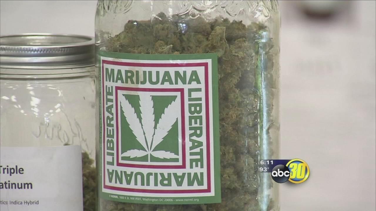 Locals react after 9th US Circuit Court marijuana users can not buy a gun