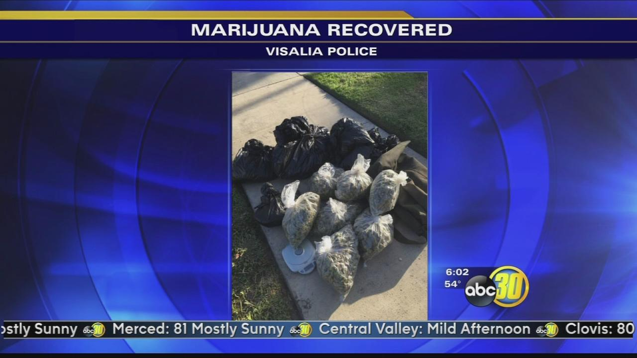 20 pounds of marijuana found during traffic stop in Visalia