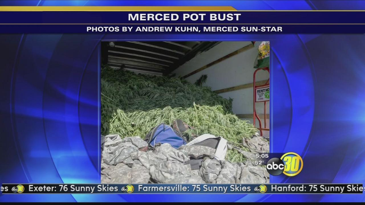U-Haul full of marijuana plants seized in Merced County