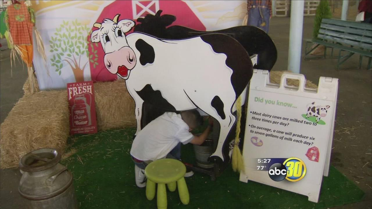 Inexpensive and fun way to entertain the kids at the Big Fresno Fair