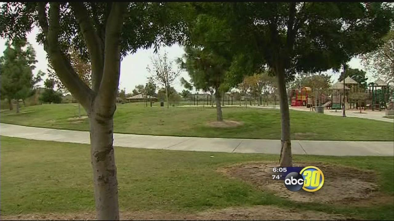 Hanford Police search for attempted kidnapping suspects after incident at popular park