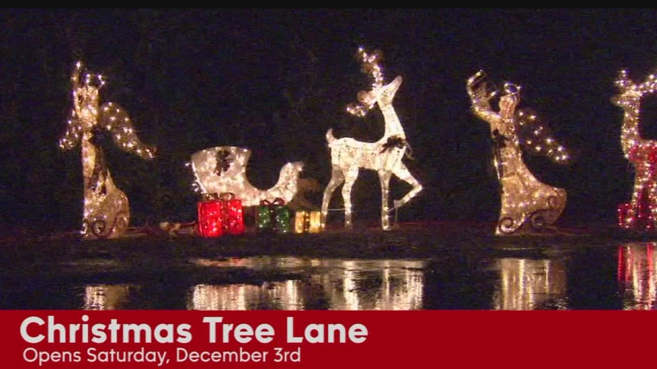 Christmas Tree Lane opens Saturday with walk night