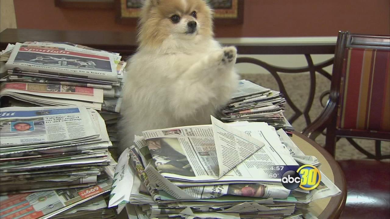 Senior living community in Fresno giving back to homeless pets with newspaper