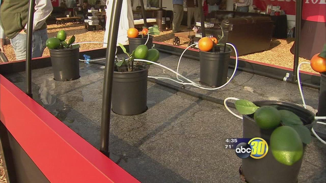 Tulare World Ag Expo showcases how irrigation techniques have evolved over 50 years