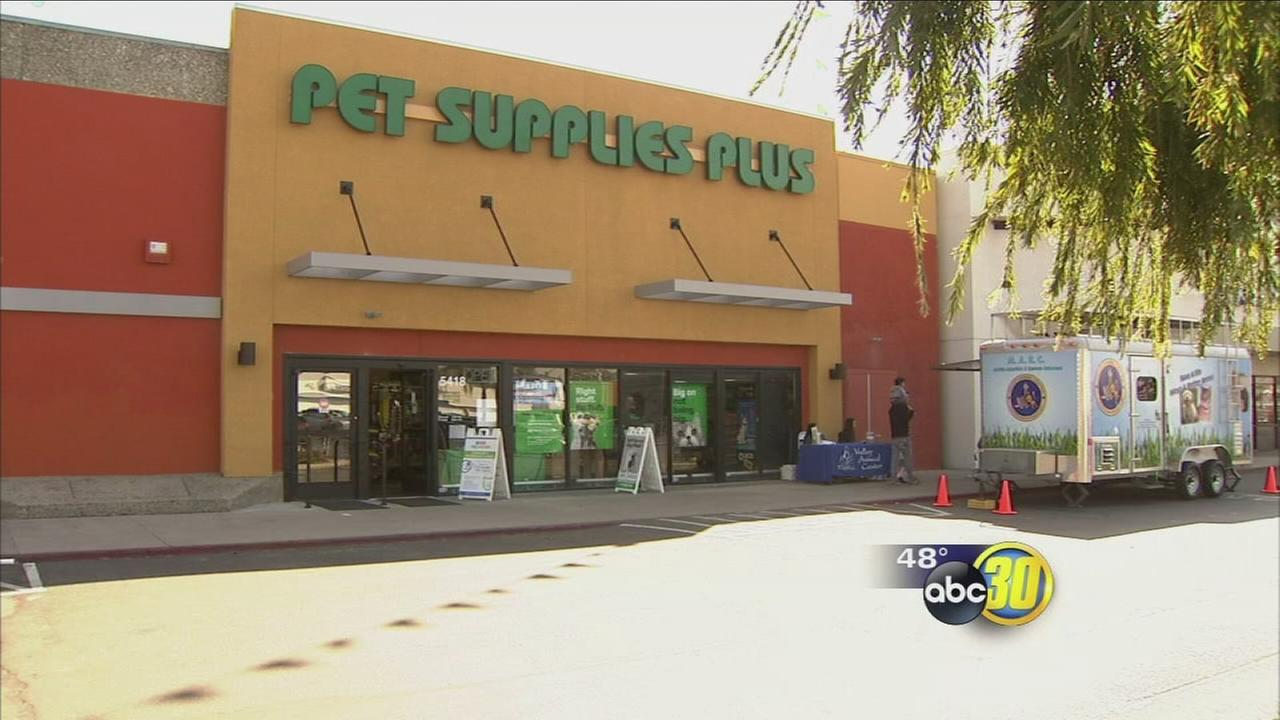 022617-kfsn-11pm-pet-store-vid