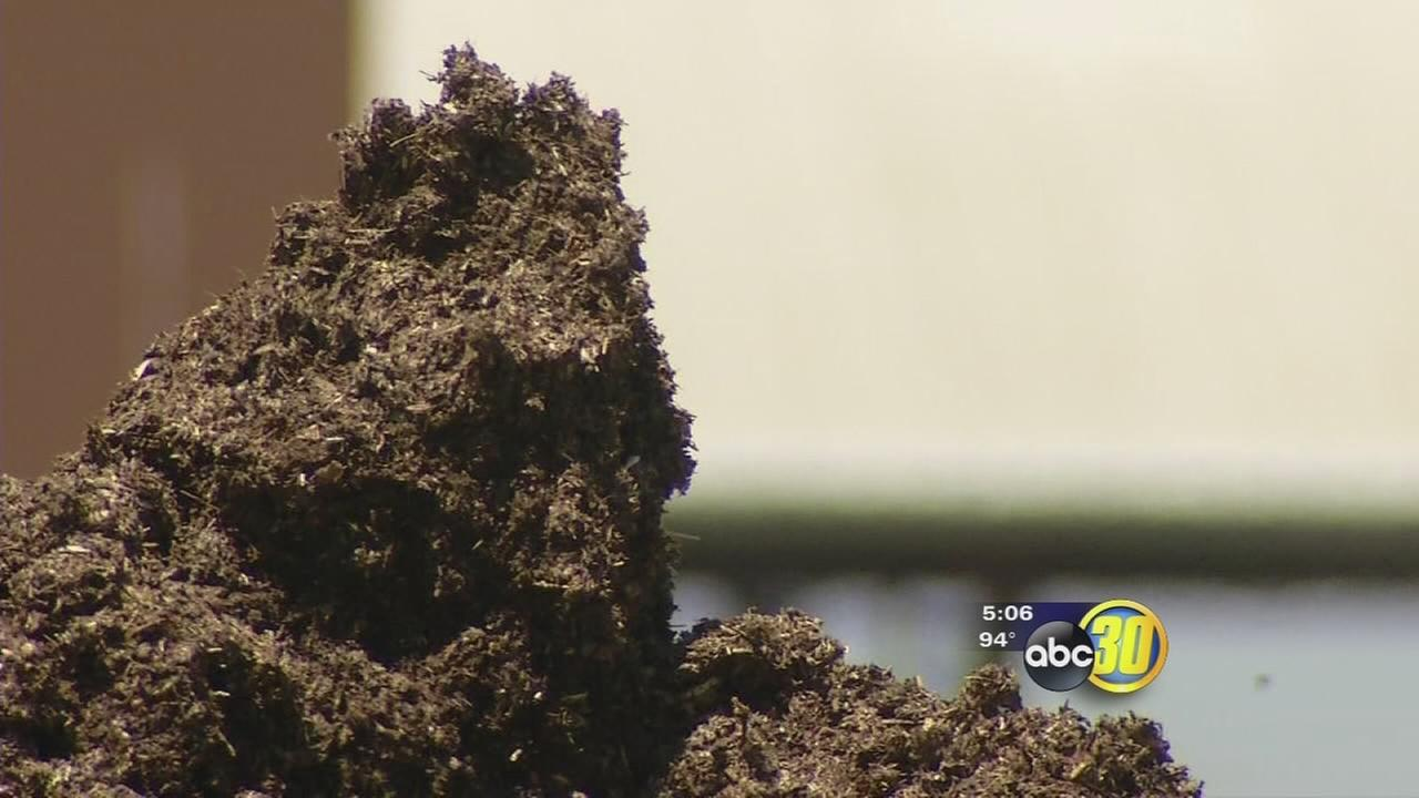 Manure prices are on the rise in Tulare County