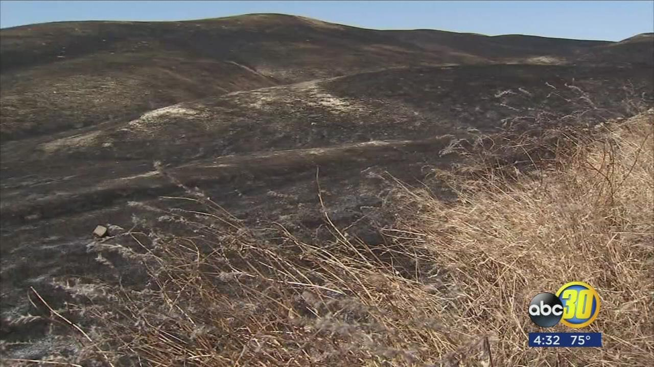 Crews mopping up grassfire near Coalinga after burning 3,500 acres