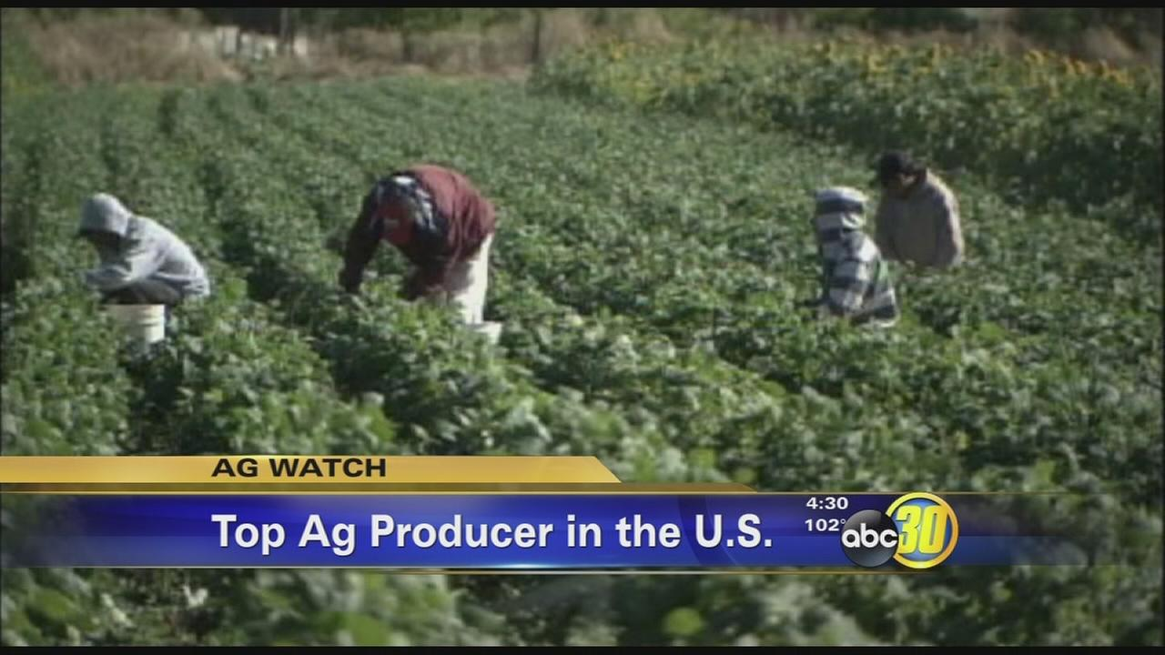 Tulare County overtakes Fresno County in Ag production