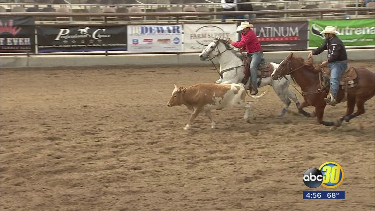 042417-kfsn-4pm-steer-wrestling-vid