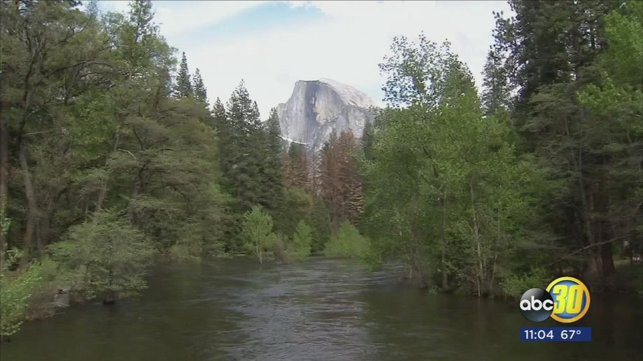 Yosemite water levels down after flooding last week