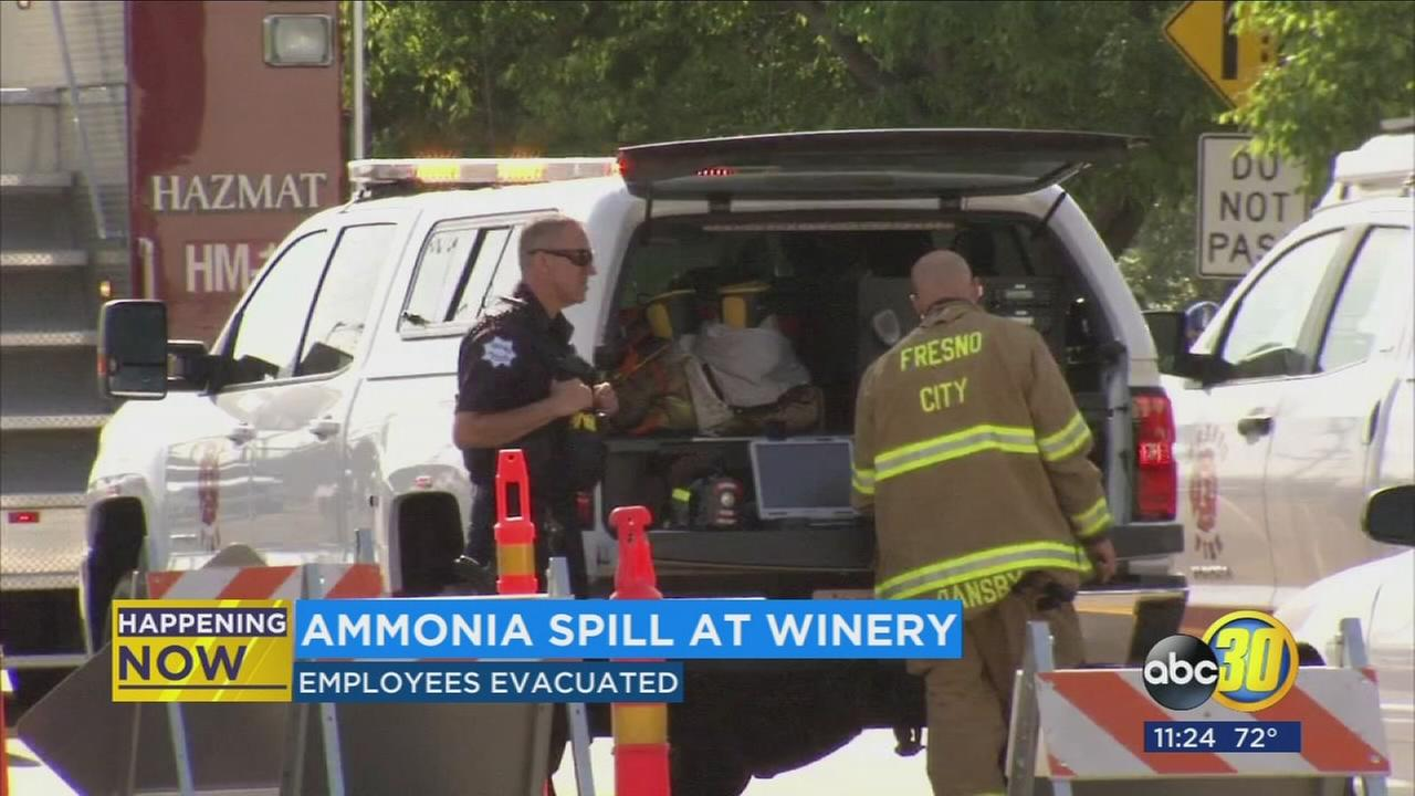 Gallo Winery employees back to work after ammonia leak
