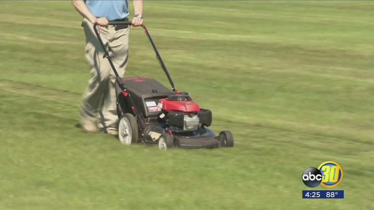 Best mower for your lawn
