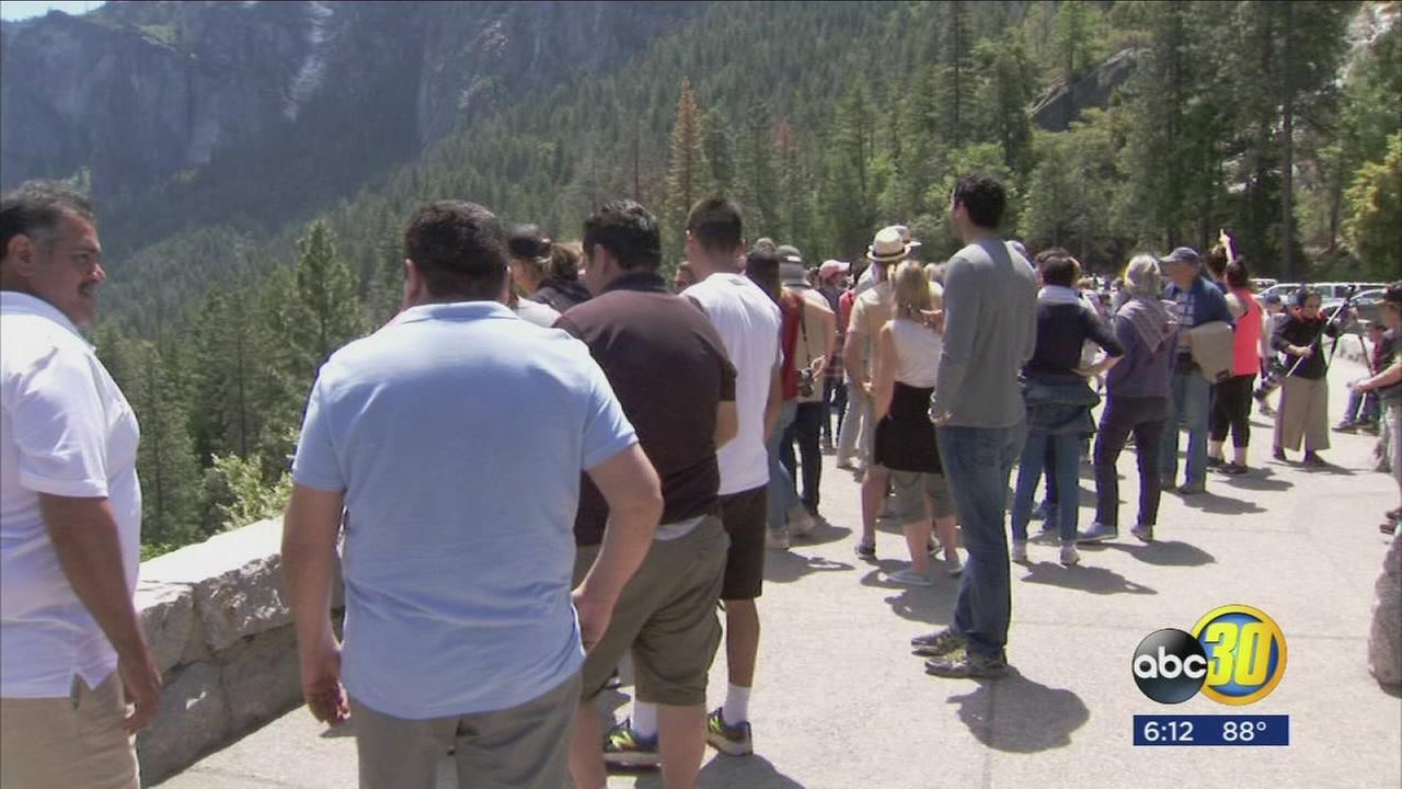 Yosemite maxes out on tourism, traffic