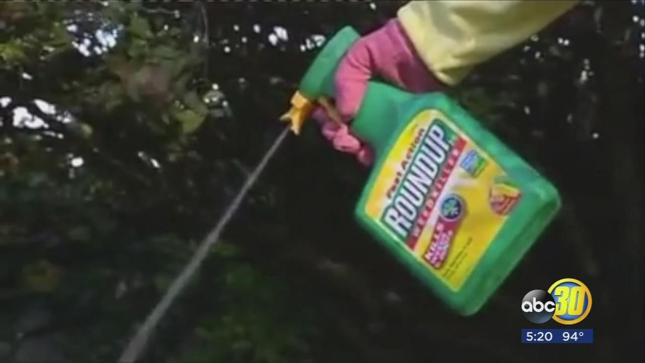 Ingredient in Roundup weed killer going on California list as cancerous
