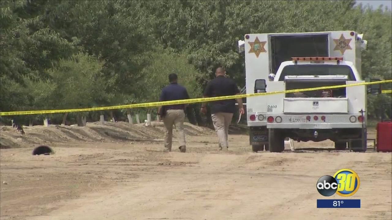 Homicide investigation underway after body found in orchard near Firebaugh