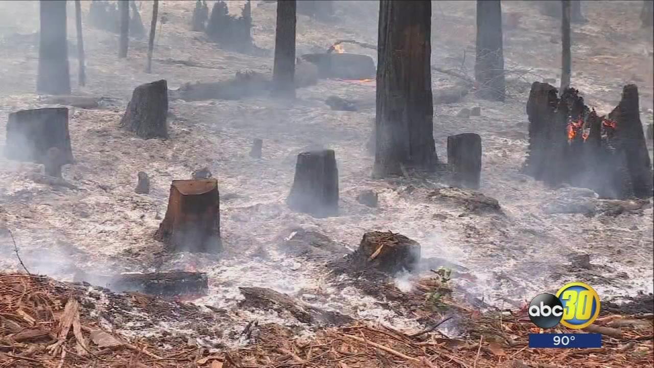 Yosemite Railroad Fire doubles in size overnight due to wind shifts