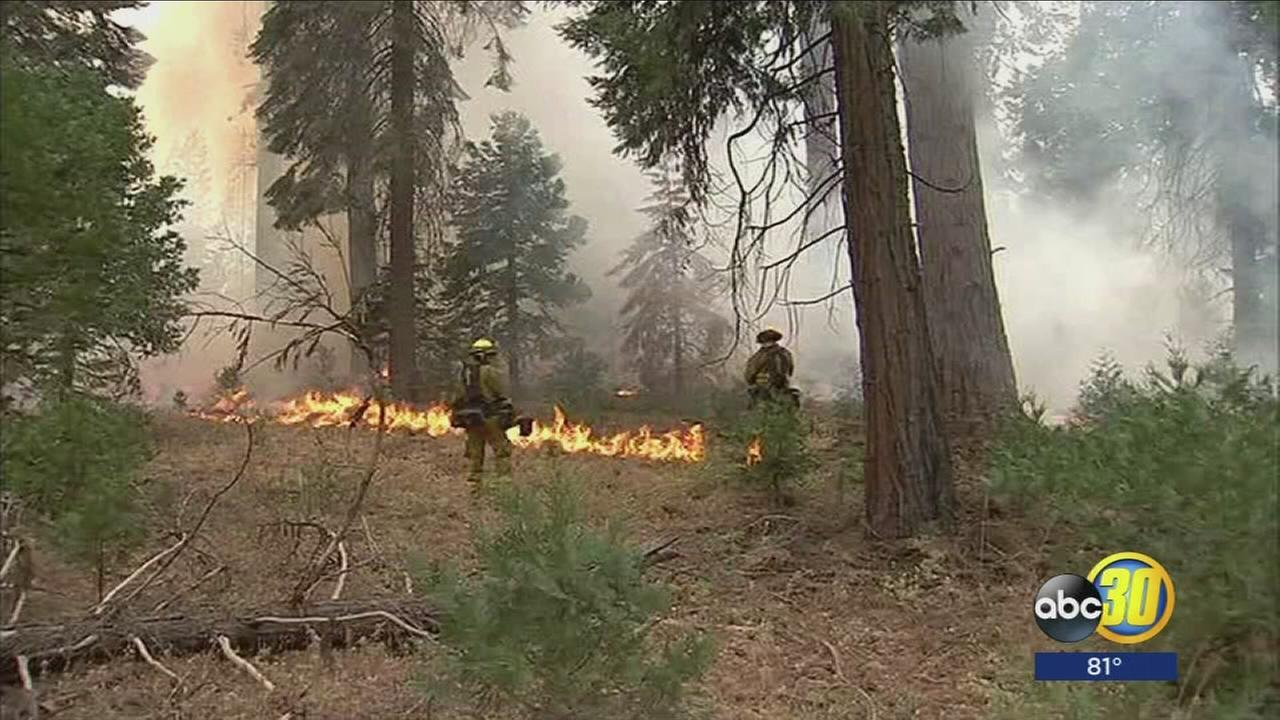 Highway 41 reopened near Sugar Pine as containment rises on Railroad Fire